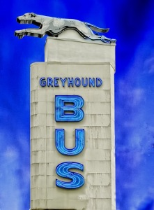 greyhound-bus-394728_640
